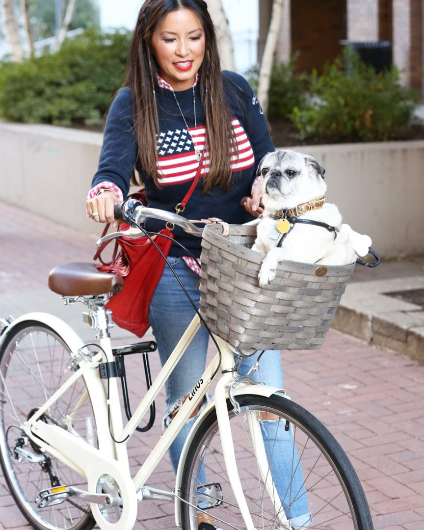 Linus bike+flag+sweater+distressed+Lévis+pug